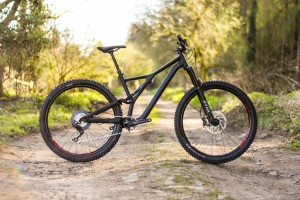Specialized Stumpjumper Detail-2.jpg