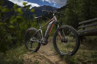 Liv Vall E+ e-bike detail whole bike 2