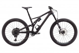 Specialized Stumpjumper Pro Evo carbon.jpg