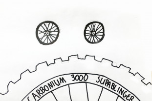 carbon-rim-sad.jpg
