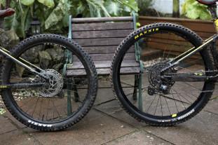 mullet bike cover.jpg
