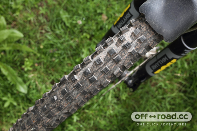 2020 Schwalbe Magic Mary top angle.jpg