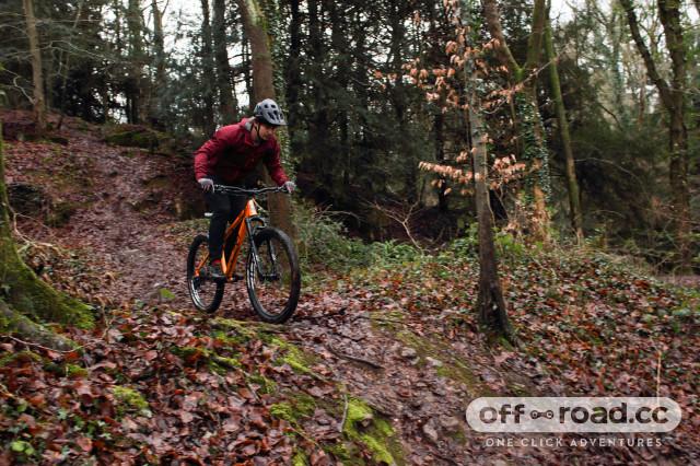 2021 Ragley Marley 1.0 riding.jpg