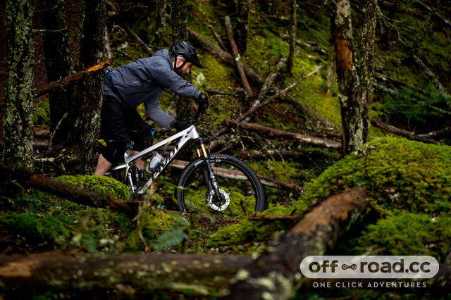 2021 pivot trail 429 lifestyle 2.jpg