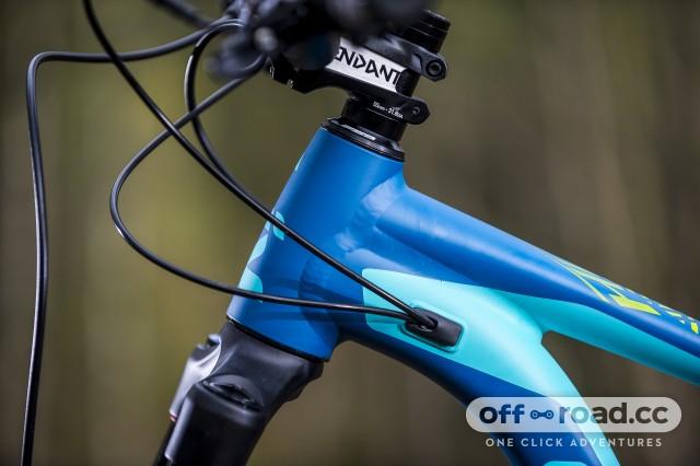 Liv Cycling Hail Detail Head tube