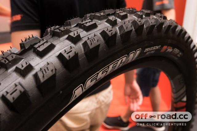Best-new-MTB-tyres-2019-107.jpg
