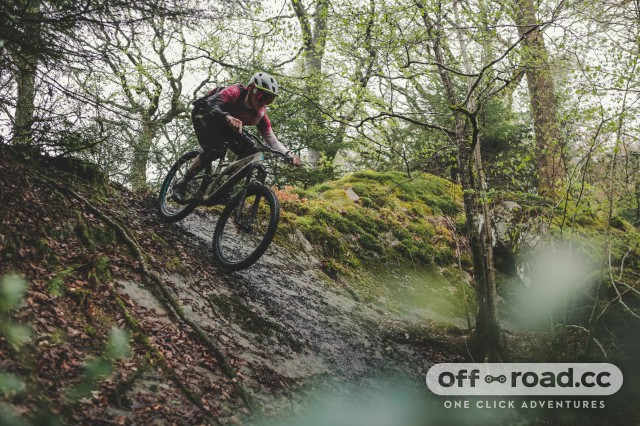 Specialized Trail Days ride a technical feature