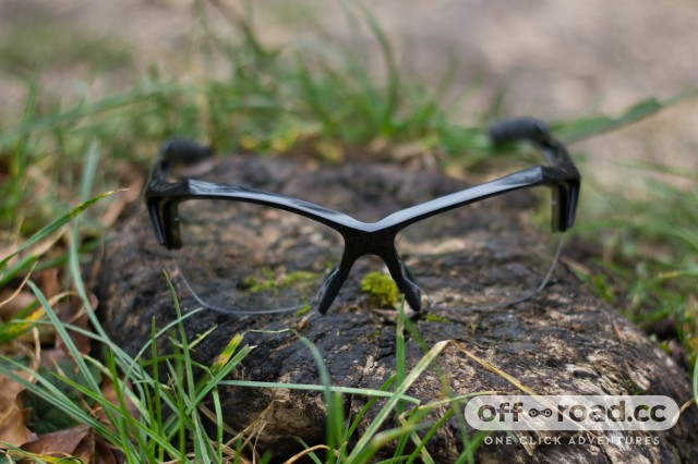 Endura Guppy Glasses-3.jpg