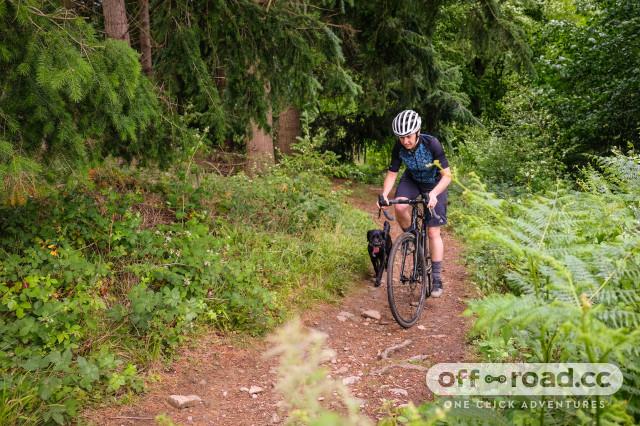 Liv Brava SLR gravel bike-6.jpg