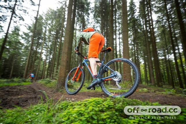Marin Bobcat Trail 4 Riding