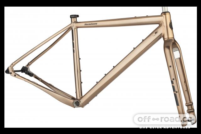 Salsa Stormchaser singlespeed gravel bike 2020 3.png