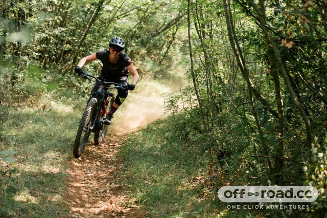 Specialized-Turbo-Levo-2019-first-ride-review-110.jpg