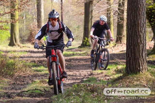 bike live 5.jpg