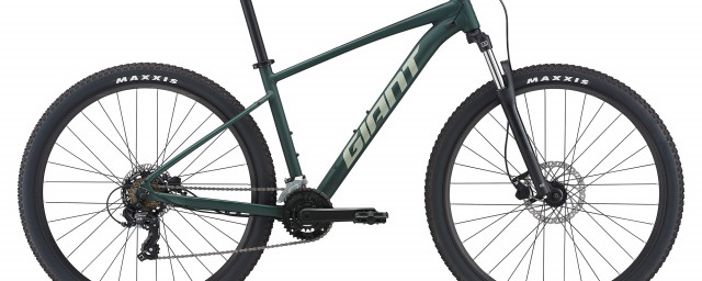 2020 giant talon Trekking Green (1).jpg