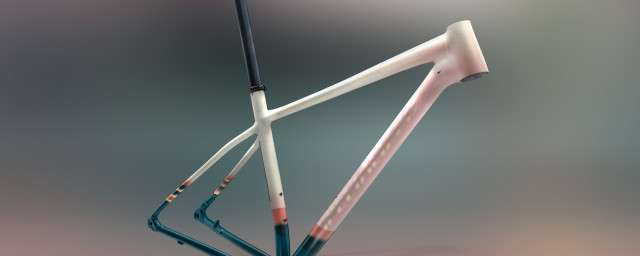 2021 Specialized Chisel LTD earth.jpg
