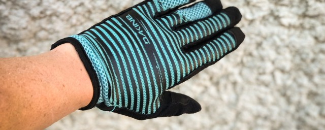 Dakine Covert Gloves Women-1.jpg