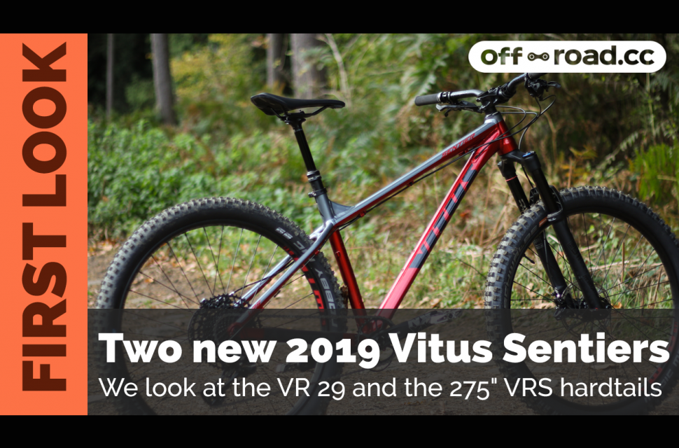 First look Vitus header.jpg