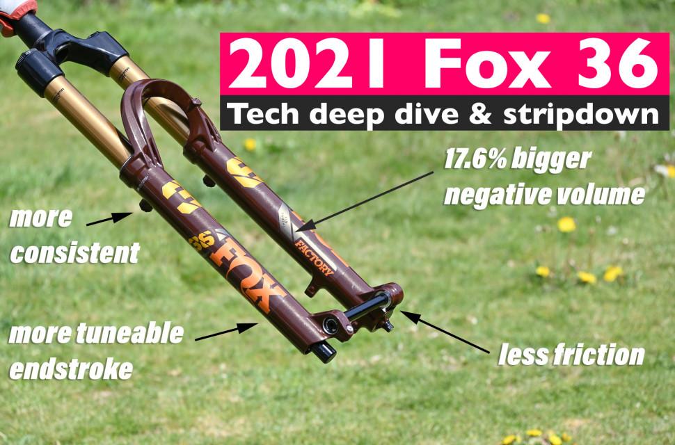 Fox-36-placeholder-web.jpg