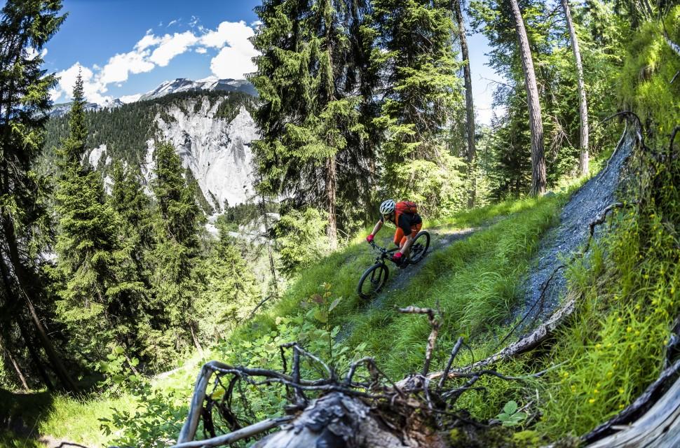 Trek Powerfly 9 FS - riding 5.jpg