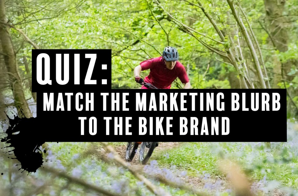 quiz-marketing-to-bike-brand.jpg